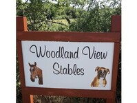 Woodland View Boxers - Dogs And Puppies